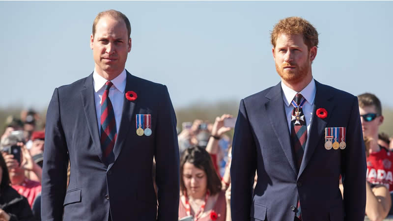 Prince William and Prince Harry's Relationship
