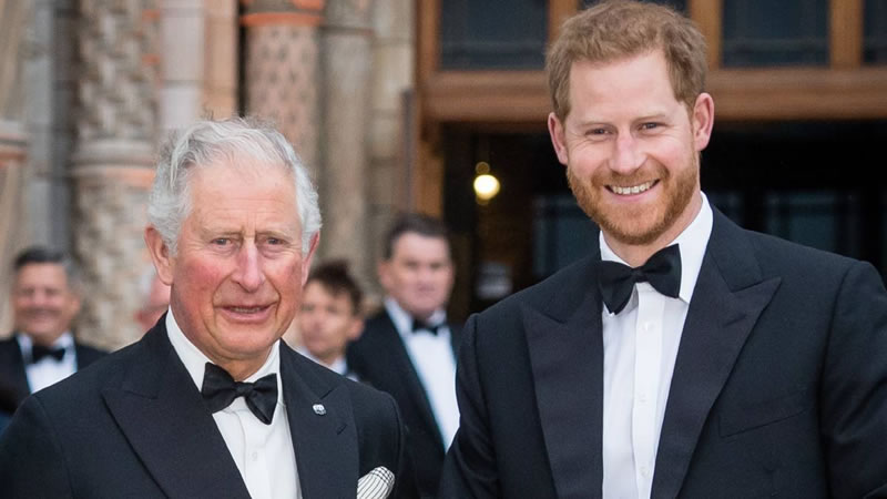 prince-charles-decision-to-cut-prince-harry