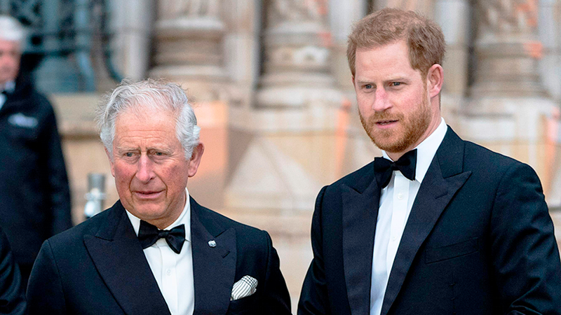 Prince Charles rejected request to speak Harry privately