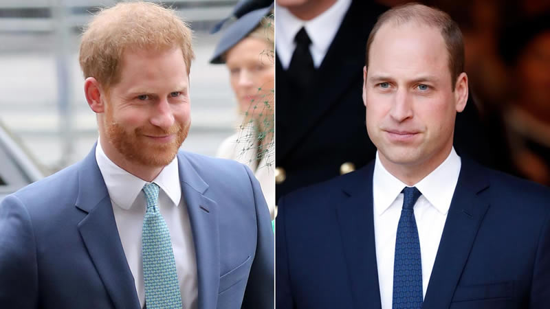 Prince Harry, William shared private conversation