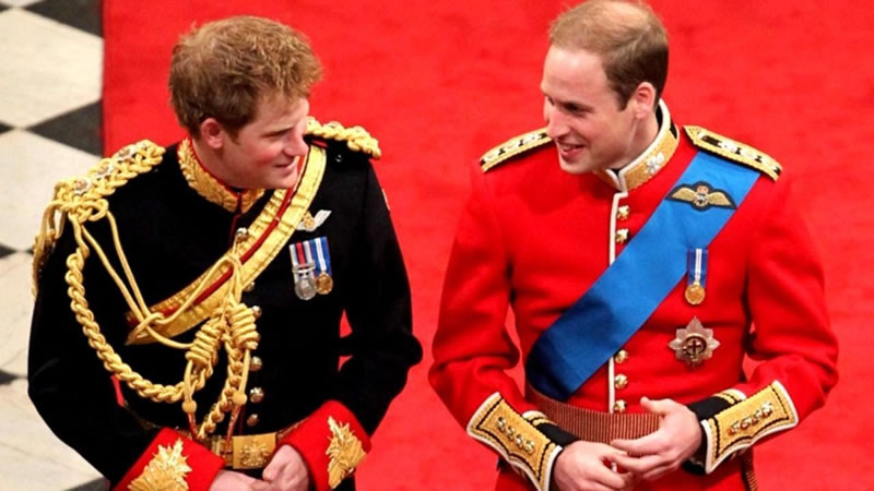 Prince William Made a Joke About Harry