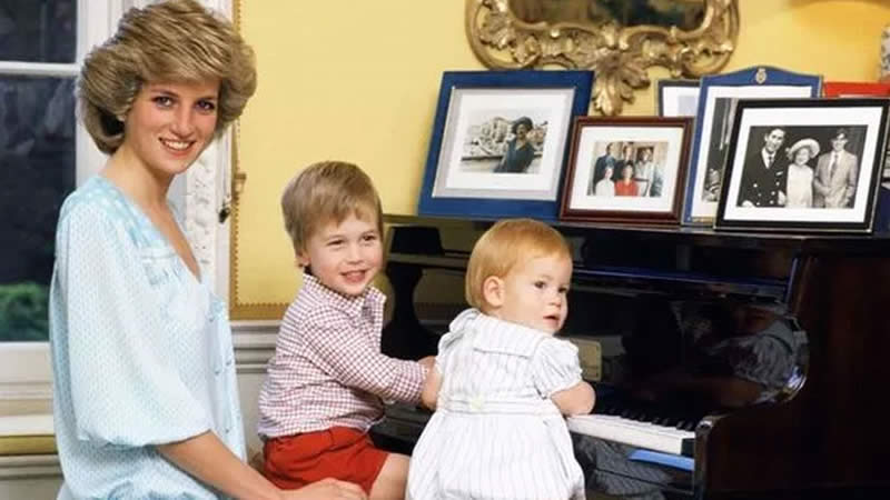 Princess Diana horrified by Prince William and Prince Harry feud