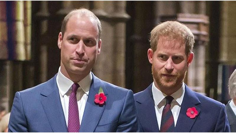 Prince Harry, William still at odds